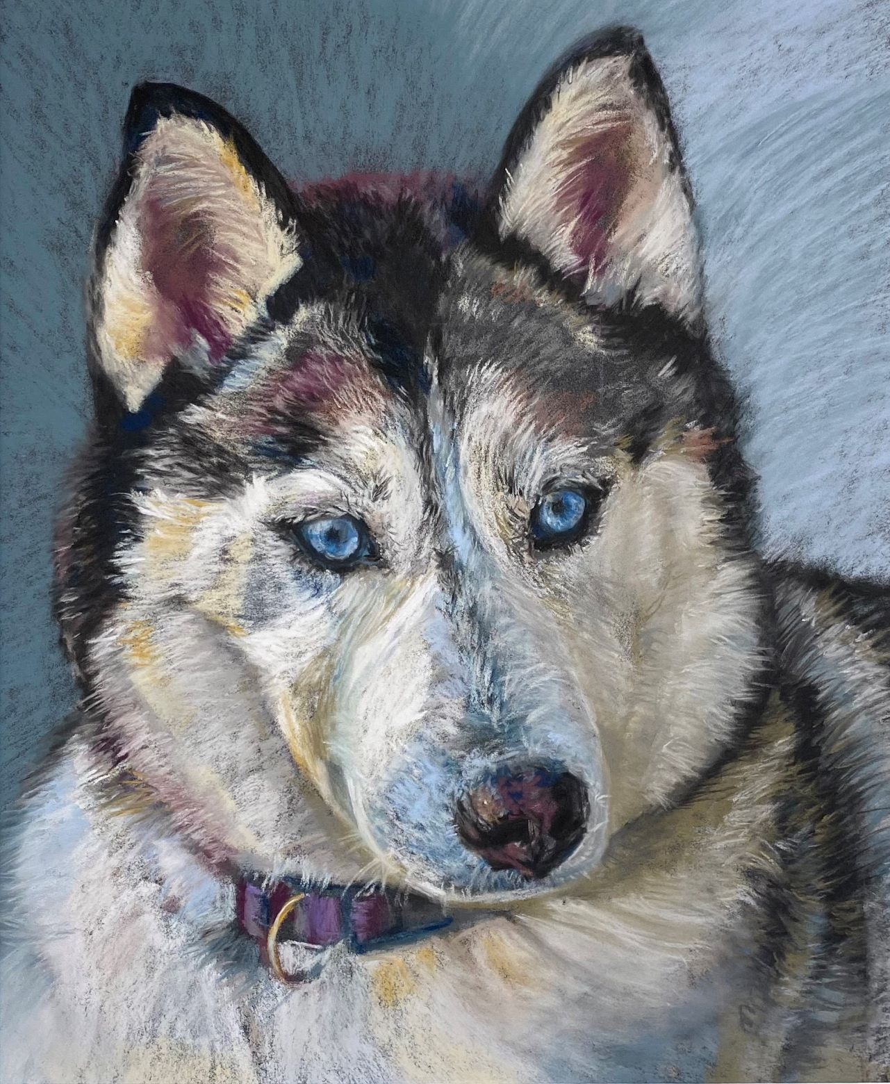 dog pet pet portrait petportrait pastel commission